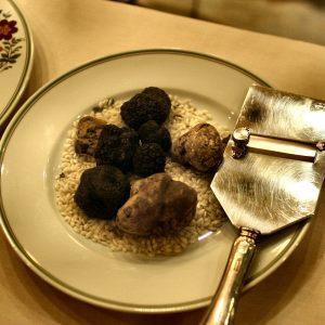 Tartufi freschi - Fresh truffels - Fris